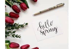"""Акция [Завершена] Пришла весна, пора """"полоть грядки"""" в своём Интернет-магазине!"""